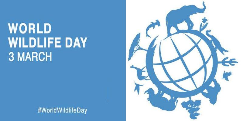 World-Wildlife-Day-celebrates-today