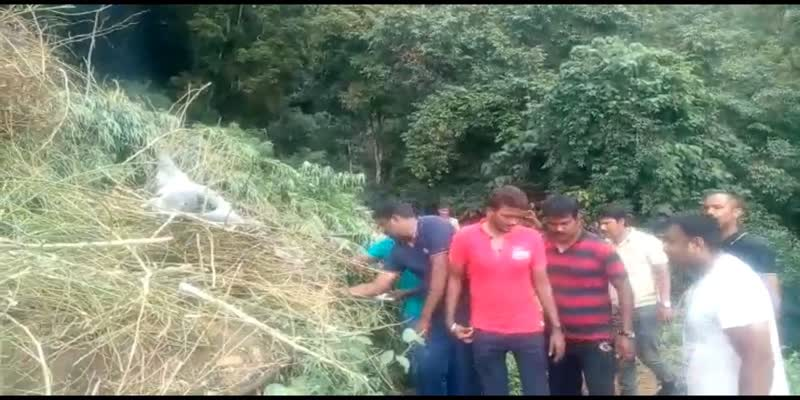 Two-arrested-for-cultivating-cannabis-on-one-acre