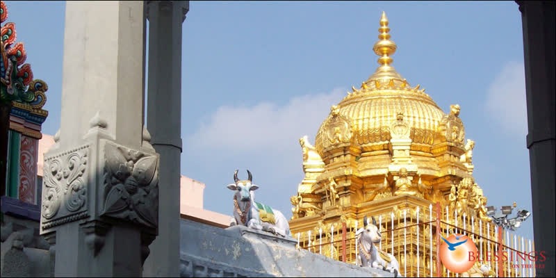 Devotees-must-book-in-online-for-Palani-temple-darshan