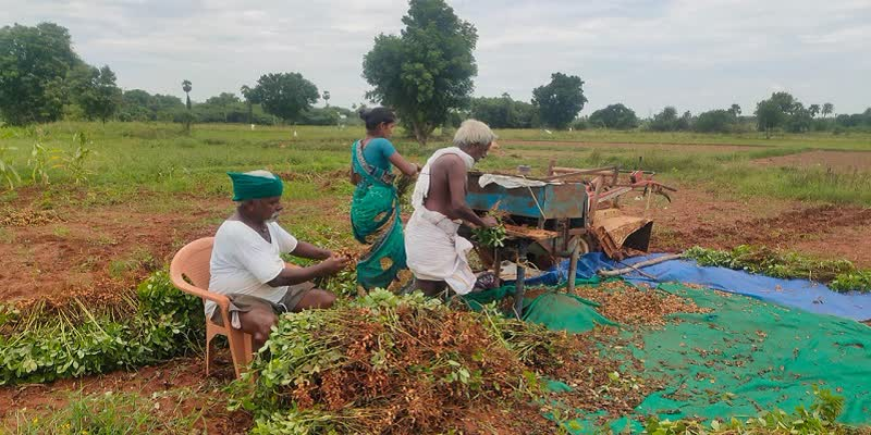 Discovery-of-brothers-Easy-groundnut-extraction-machine